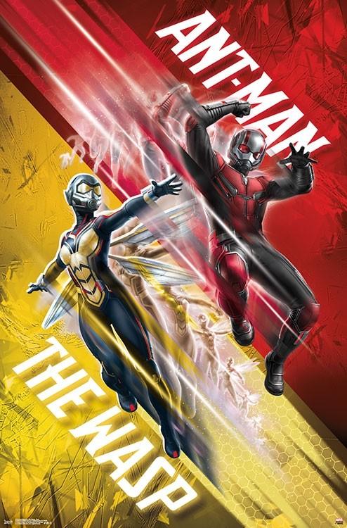 Ant Man And The Wasp Duo Poster Print Item Vartiarp15243
